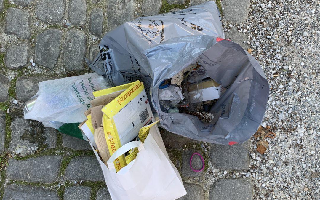 1. Müll-Sammelaktion